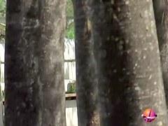 Skirt sharked babe got her panties locked to the railing