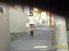 Public sharking of a cute Japanese babe in a narrow street