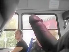 Public masturbation on bus All above