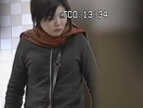 Chinese women spied in public toilet