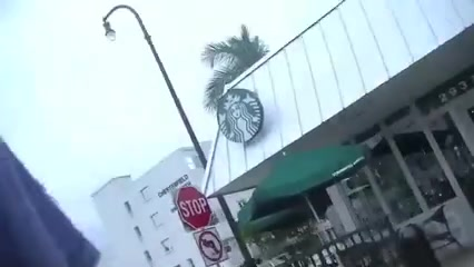 Voyeurchamp.com Wife Upskirt Flashing Strangers At Starbucks
